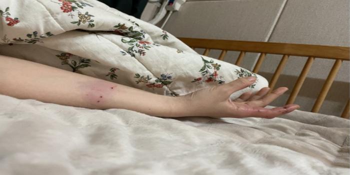 """Trêu đùa mèo cưng quá đà, nữ streamer bị """"boss"""" tấn công tới mức phải nhập viện"""